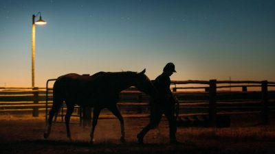 lean on pete sunset shot