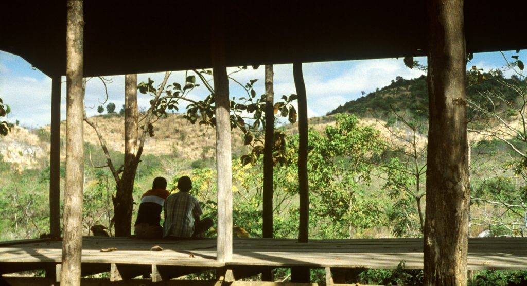 This image has an empty alt attribute; its file name is tropical-malady-gorgoeus-vista-day-1-Weerasethakul-1024x556.jpg