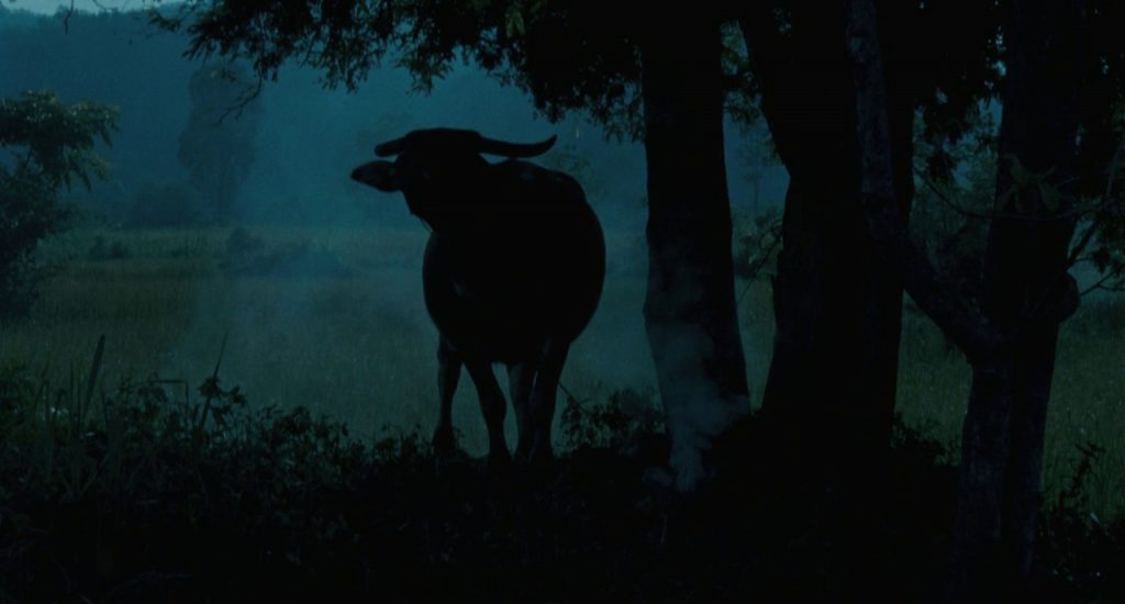 This image has an empty alt attribute; its file name is uncle-boo-cow-silohuette-Weerasethakul-1024x550.jpg