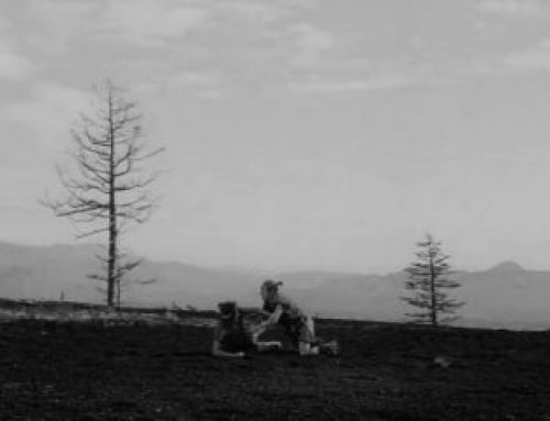 The Hidden Fortress – 1958 Kurosawa
